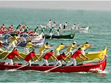 Regata Caorline